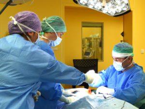Operace ušních boltců